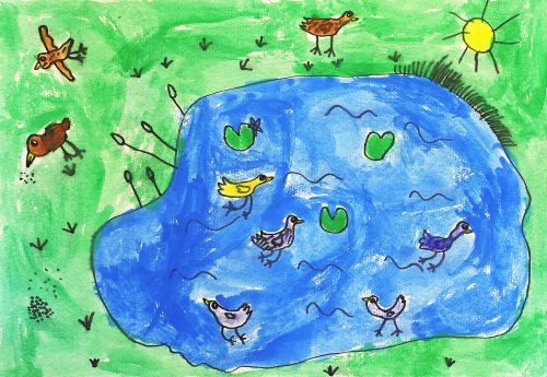Žana Šivec: Ptičja zgodba