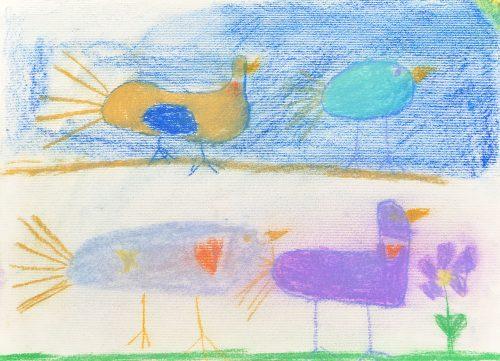 Marija Šuligoj: Skrivnostni svet ptic