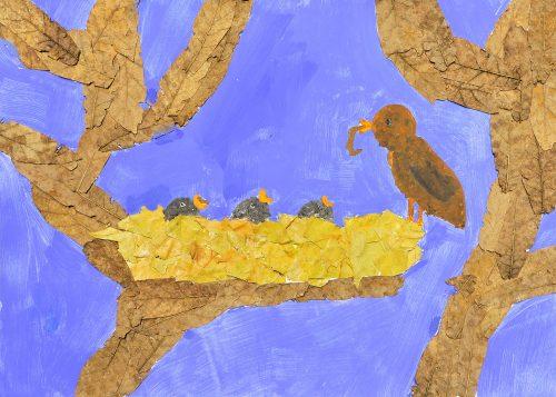 Tia Štekar: Ptičji mladiči so lačni