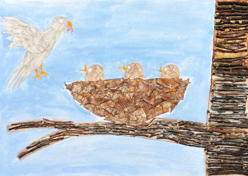 Ela Maffi: Ptičji mladiči se hranijo