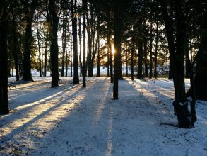 Jetmir Sylejmani: Sonce nad jezerom išče sledi