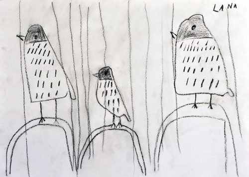 Lana Zabukovšek: Naše ptice