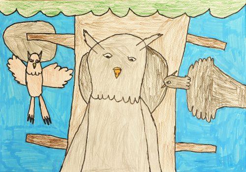 Vita Hozjan: Divje ptice - Velika uharica