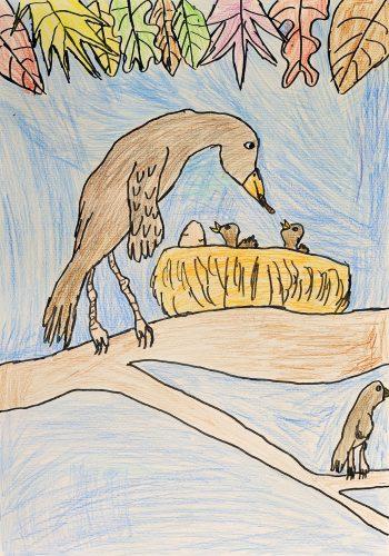 Bor Rajtar: Divje ptice - Jastreb