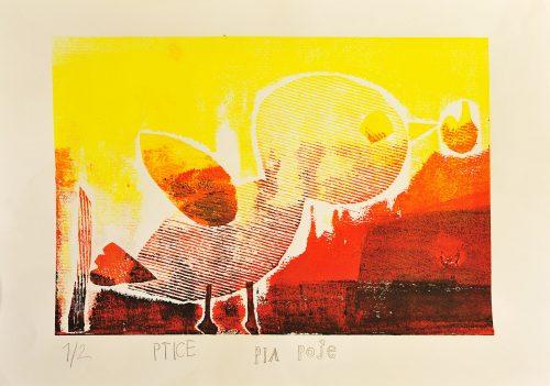 Pia Poje: Ptice