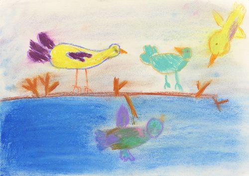 Isabel Besednjak Kadič: Skrivnostni svet ptic