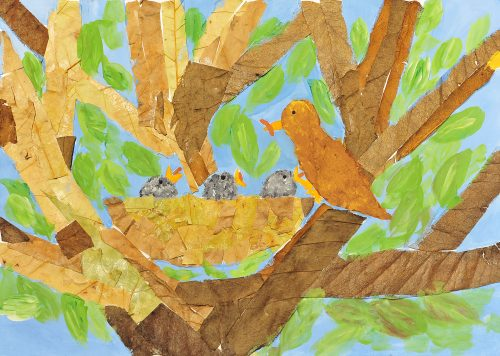 Maruša Zelinšek: Ptičji mladiči se hranijo