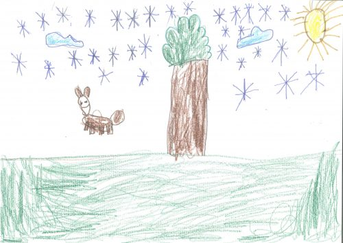Adi Shala: Če bi bil pes