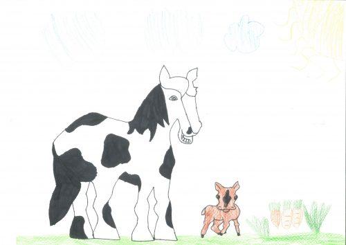 Danaja Granda: Konj