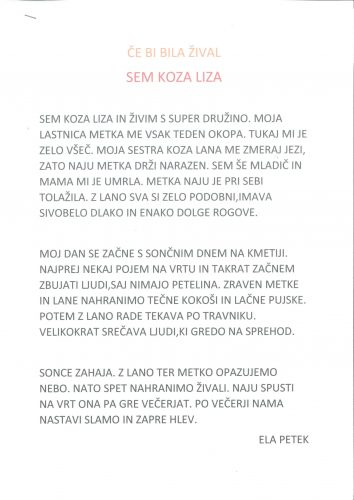 Ela Petek: Sem koza Liza