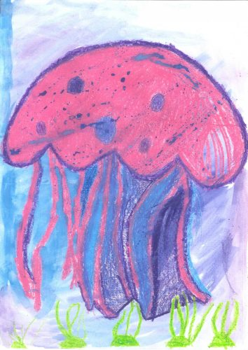 Enej Miler: Meduza