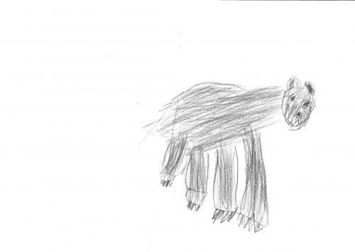 Gašper Zalar: Medved
