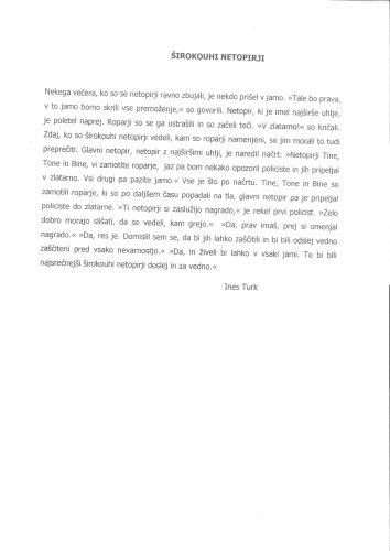 Ines Turk: Širokouhi netopirji