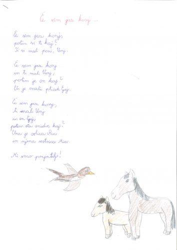 Iris Pal: Če sem jaz konj…