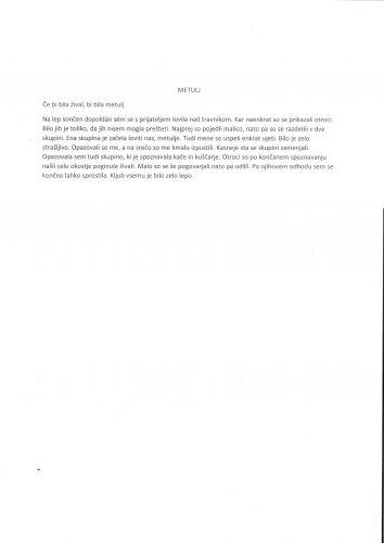 Manca Pohole: Metulj