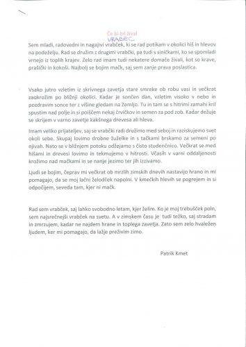 Patrik Kmet: Vrabec