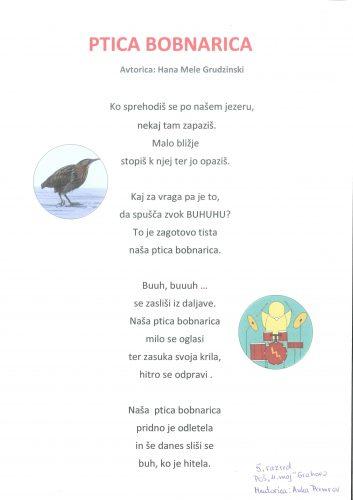 Hana Mele Grudzinski: Ptica bobnarica
