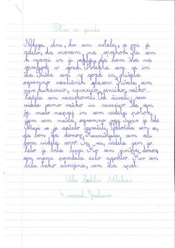 Ula Žaklin Mlakar: Ptice iz gozda
