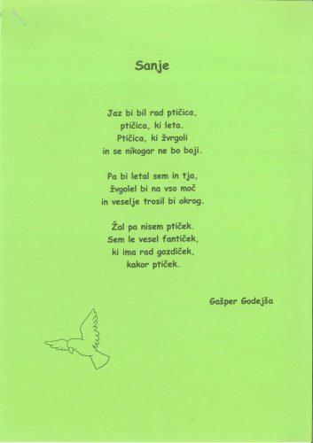 Gašper Godejša: Sanje