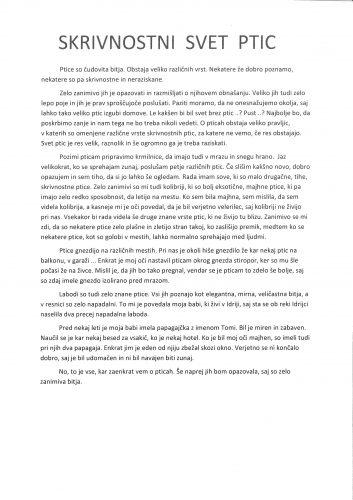 Zala Zbačnik: Skrivnostni svet ptic