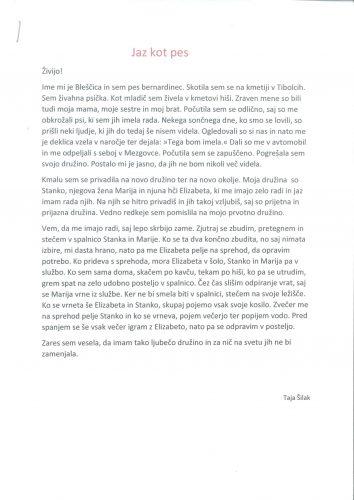 Taja Šilak: Jaz kot pes