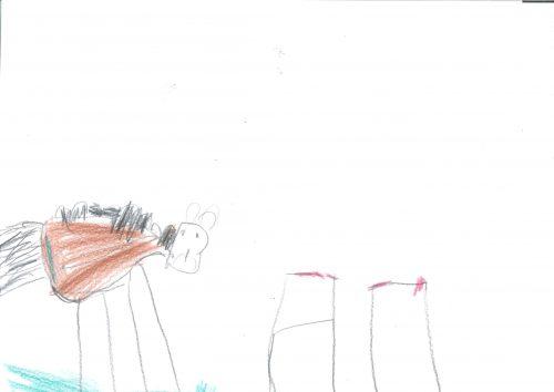 Tilen Turšič: Konj