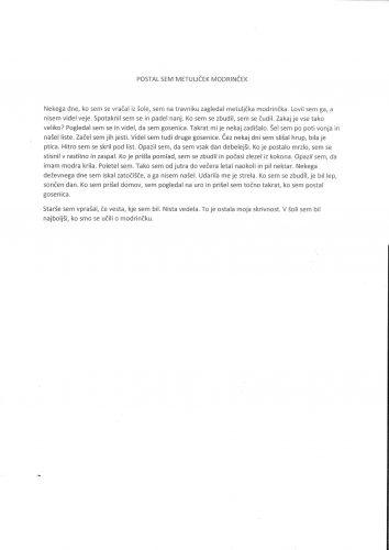 Tim Petek: Postal sem metuljček modrinček
