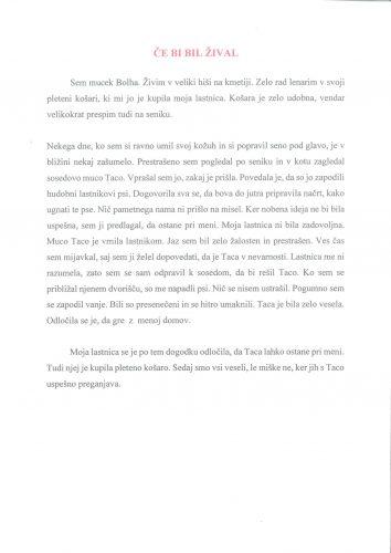 Tomaž Suša: Rešena taca