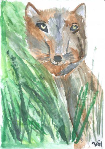 Vid Meden: Volk iz Javornika