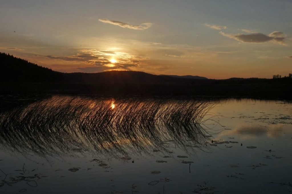Cerkniško jezero danes. Foto Tine Šubic