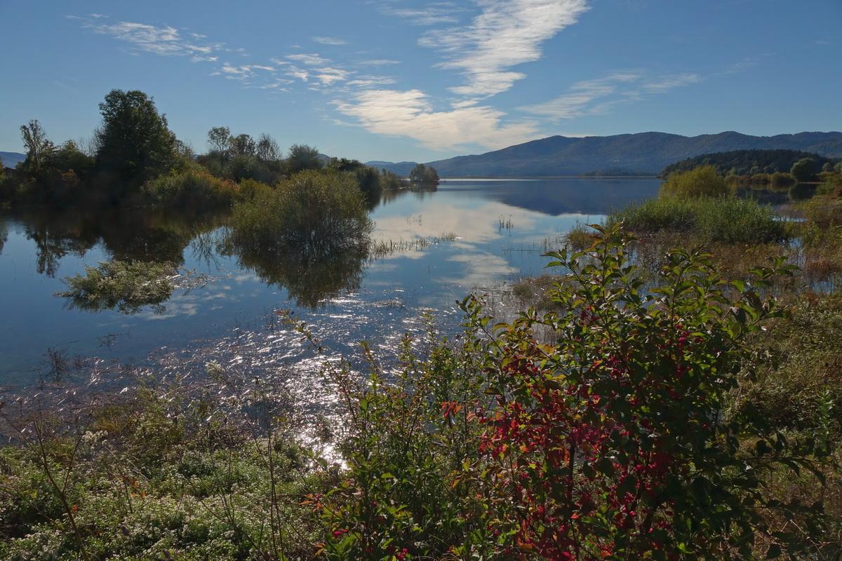 Cerkniško jezero v jesenskih oblačilih. Foto Tine Šubic