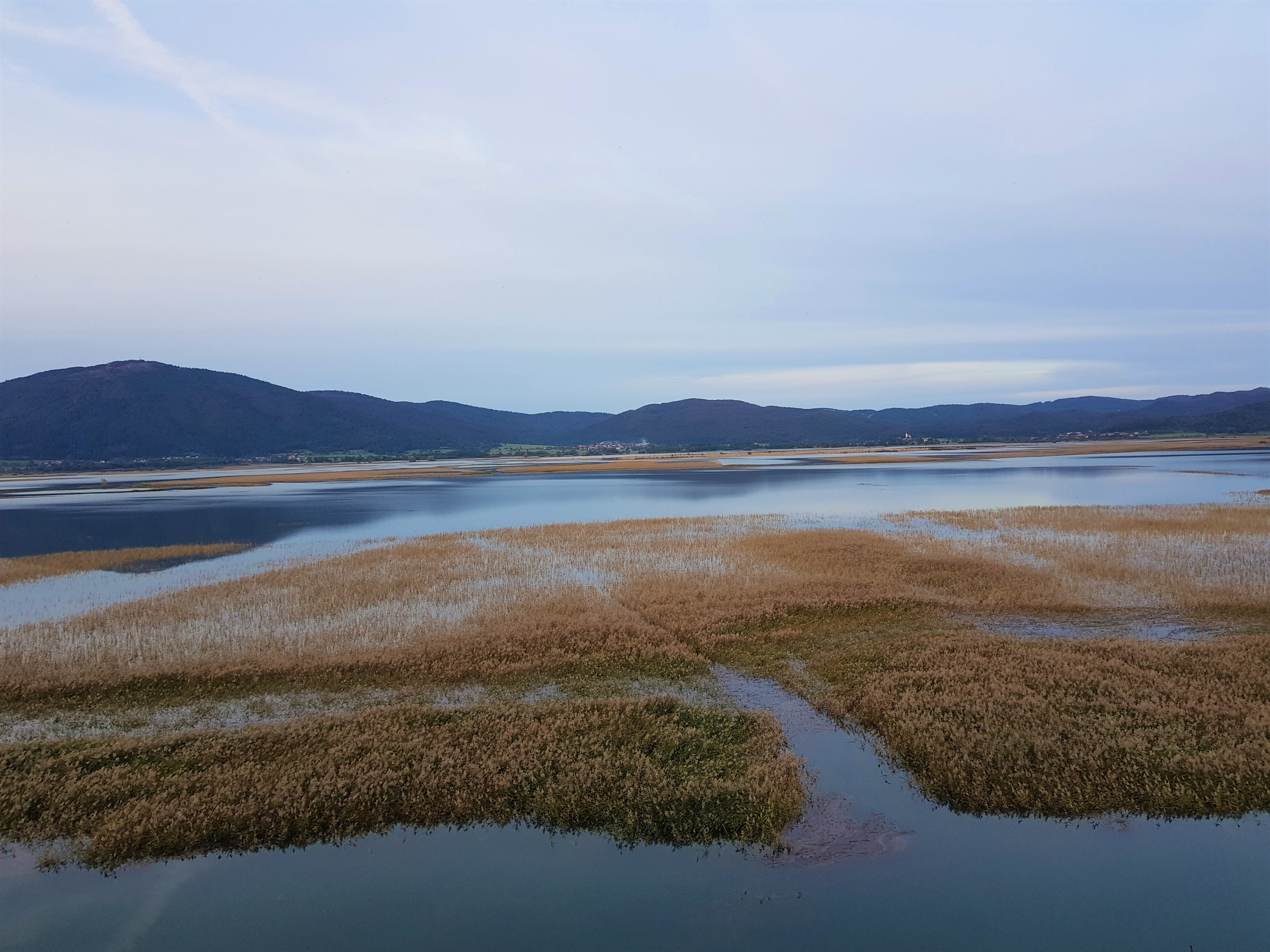 Spokoj na Cerkniškem jezeru. Na prvi pogled. Pogled skozi daljnogled pa razkrije ptičji živžav, valovanje tršce v vetru, rahlo šumenje izvirov Cerkniškega jezera. Foto Eva Kobe