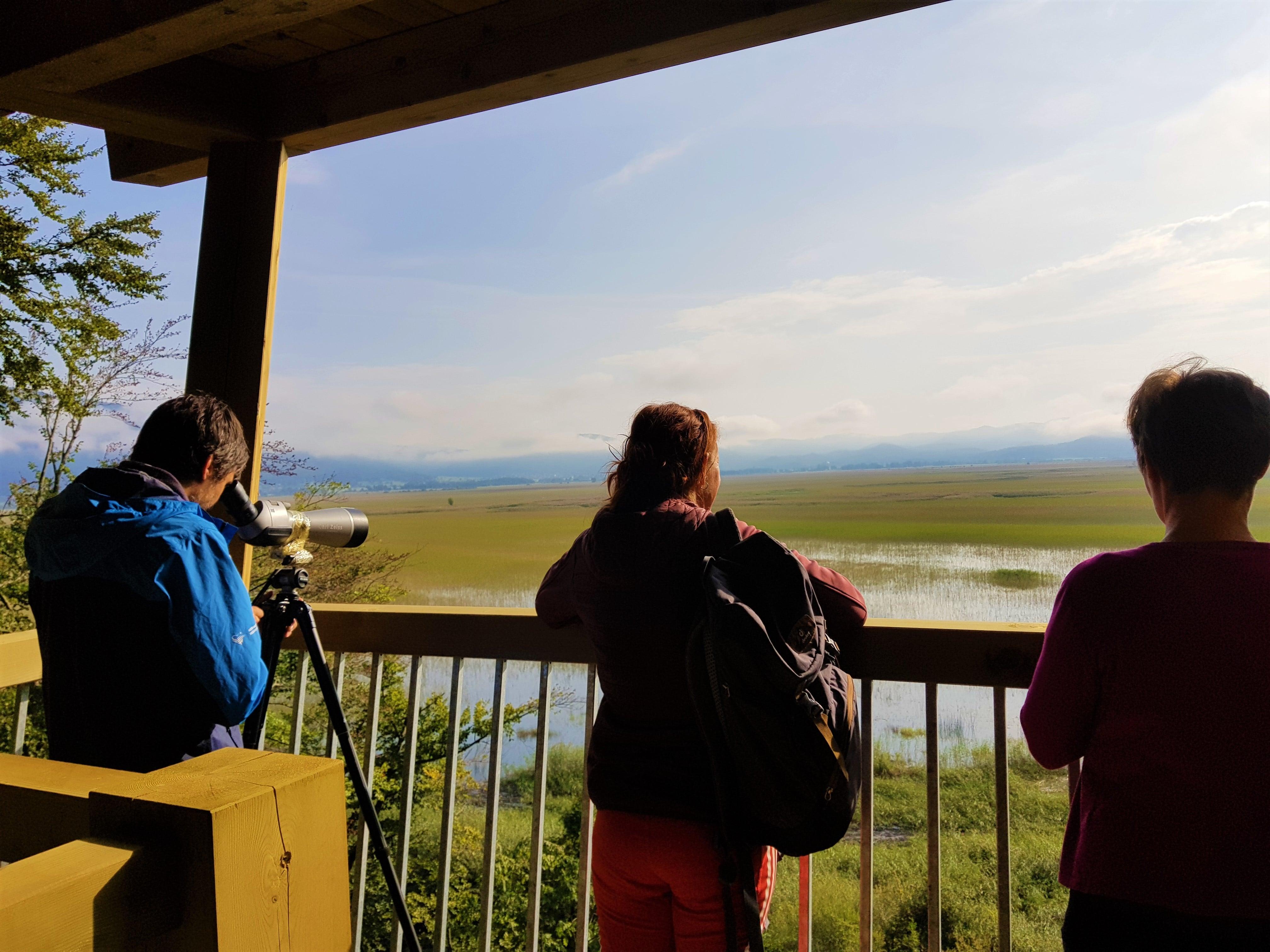Dih jemajoči pogled s stolpa Otočec. Če imate daljnogled ali spektiv, vidite še pisano množico različnih ptic. Na jezeru so doslej opazili že več kot 270 različnih. Foto Eva Kobe