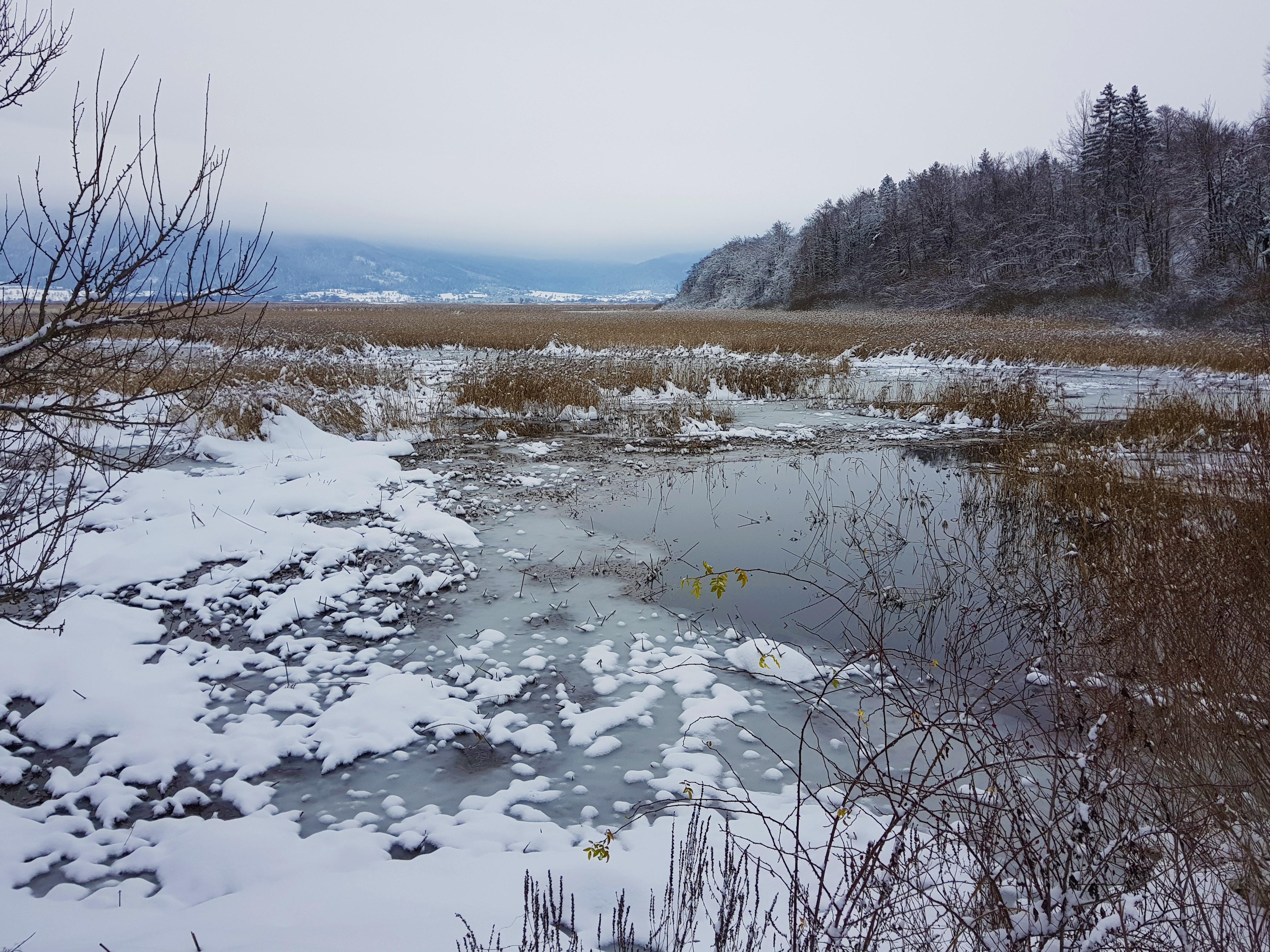 Cerkniško jezero v objemu snega in ledu.