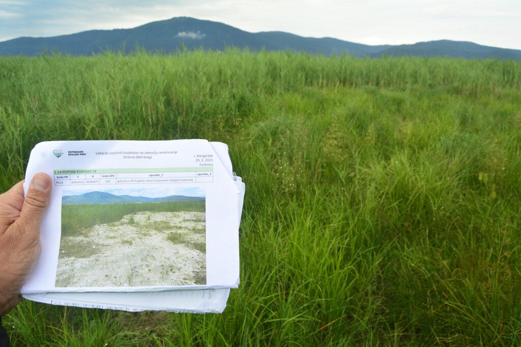 Naseljevanje rastja na območju renaturacije Stržena spremljamo z namenom opredeliti vpliv in učinke projekta. Fotografija prikazuje isto območje leta 2020 in 2021 in kaže na dobro obnovitveno sposobnost ekosistemov.